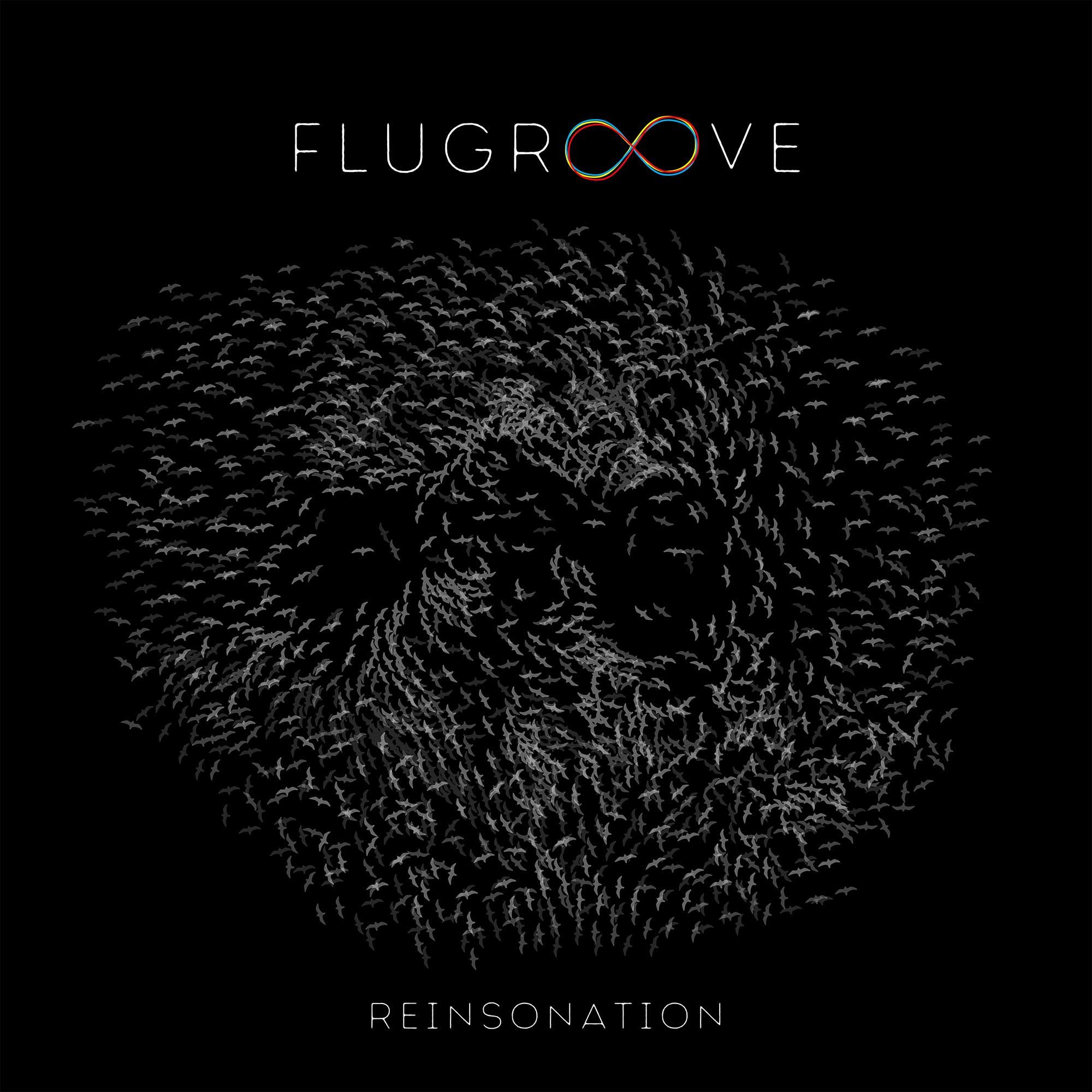 F L U G R O O V E - Dutch Ambient Indietronics | Reinsonation